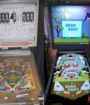 Duck Hunt Pinball