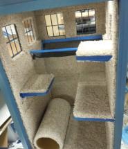 TARDIS Cat Fort Interior